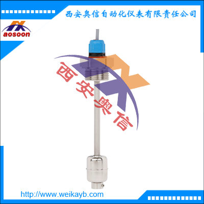 RLS-4000德国威卡RLS-4000磁性浮球开关WIKA KSR液位计